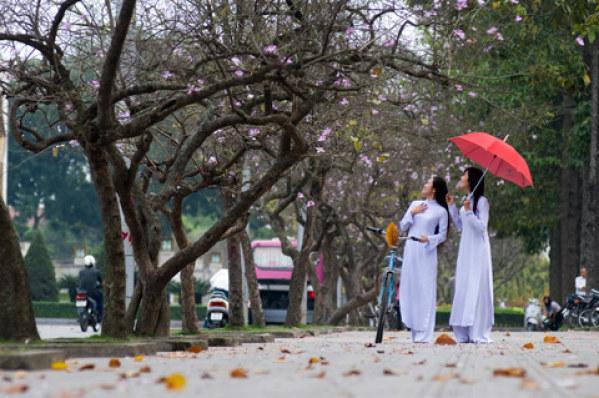 Hanoi highlights tour photo