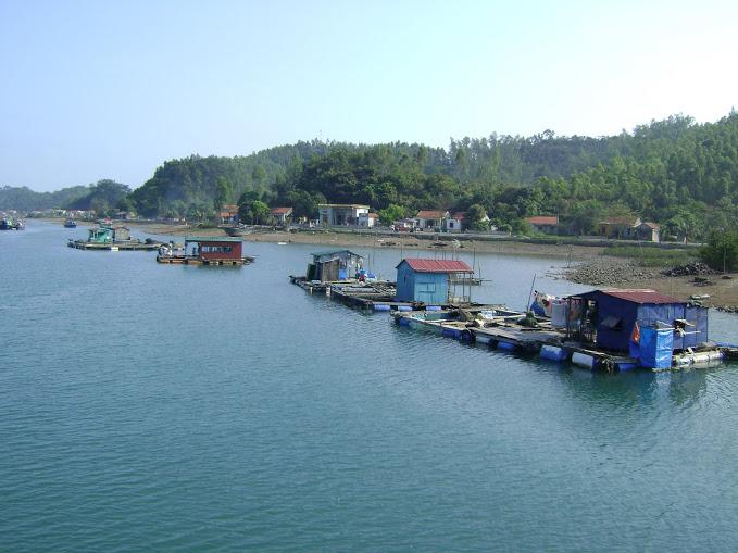 Quan Lan lagoon