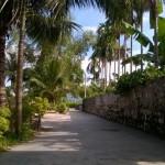 Yen Duc village in Photos
